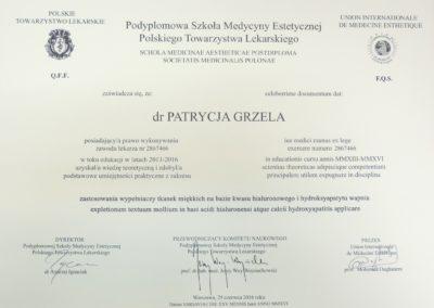 Dyplom Grzela Patrycja Demed Zastosowanie Wypelniaczy Tkanek Kwas Hialuronowy